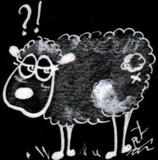 theorie-du-mouton.jpg
