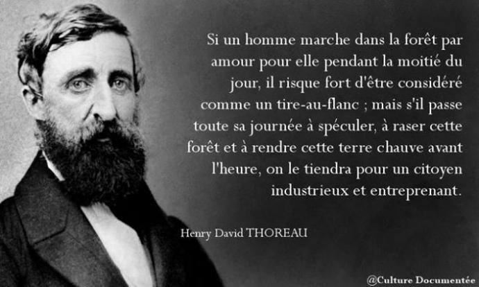 thoreau-4.jpg