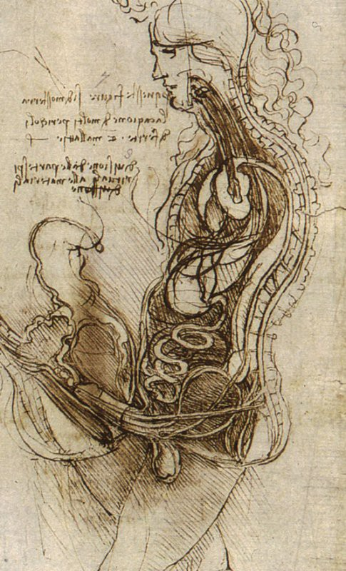 Allez copulez Léonardo da Vinci 1492 Coition_of_a_Hemisected_Man_and_Woman.jpg