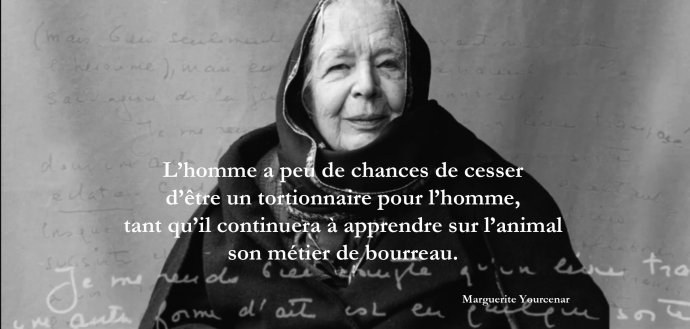 Marguerite Yourcenar small.jpg