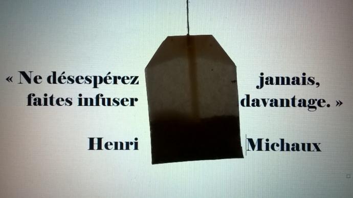 citation-henri-michaux-ne-dc3a9sespc3a9rez-jamais-espoir.jpg